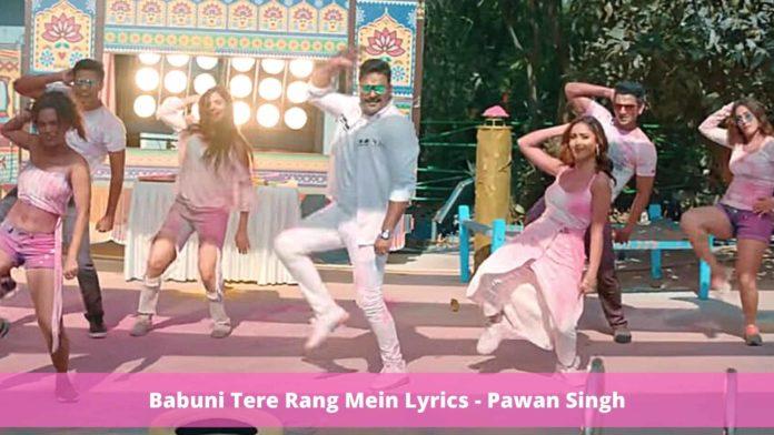 Babuni Tere Rang Mein Lyrics - Pawan Singh